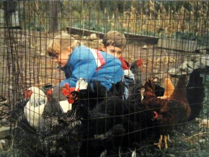 This is me (in blue) and my brother Gary (in red). At this point in my life, I was only slightly larger than the chickens. They probably thought I was a chicken too.
