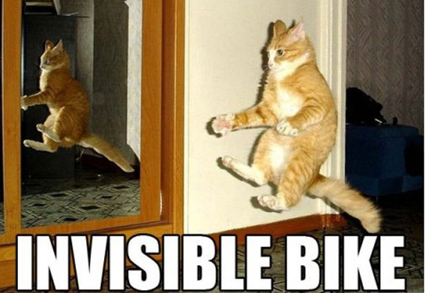 invisible-bike-cat-meme