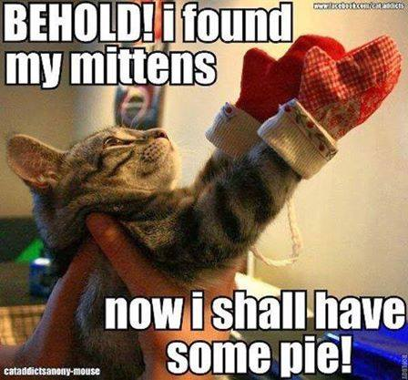 mittens-pie-cat-meme