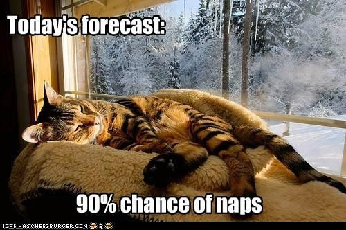 Hopefully rain, too.  I like rain, plus it's good weather for napping.