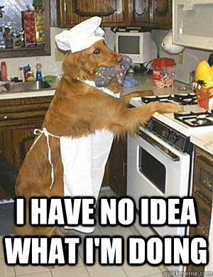 dog-cooking-meme