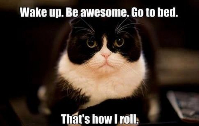 cat-meme-be-awesome