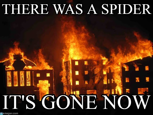 "[Image of burning buildings with meme text that says, ""There was a spider. It's gone now.""]"