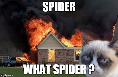 "[Images of a burning house with Grumpy Cat in the foreground and meme text that says: ""Spider? What spider?""]"