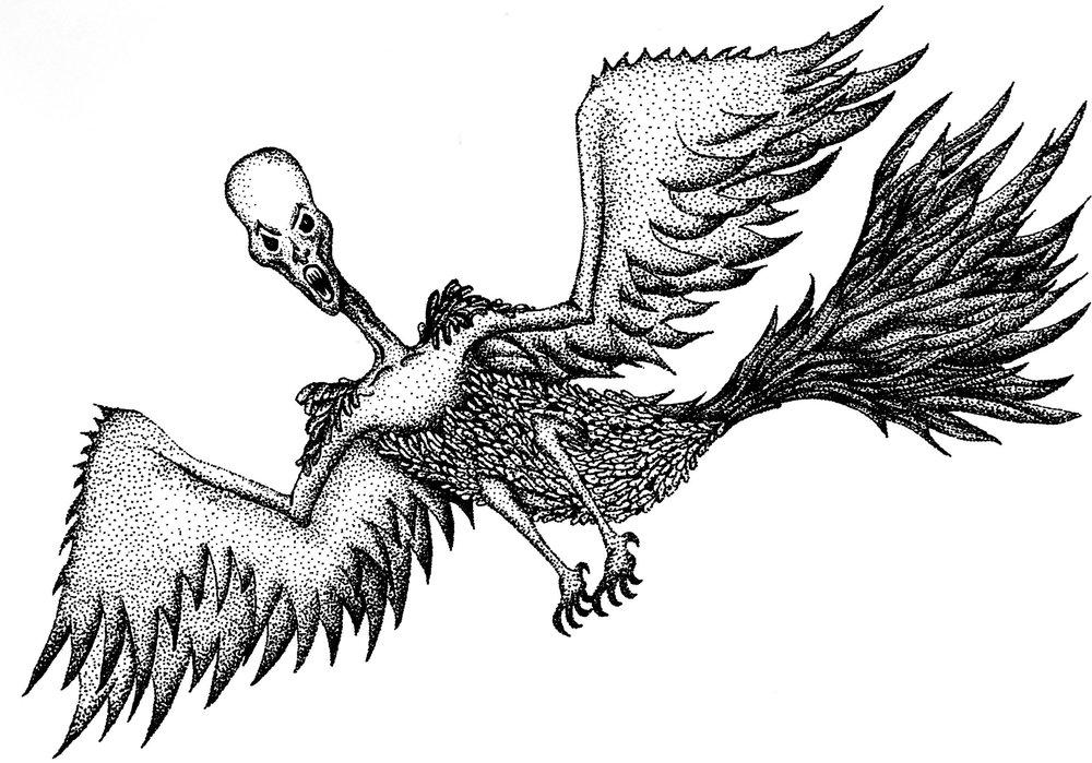 Creepy bird with human face.