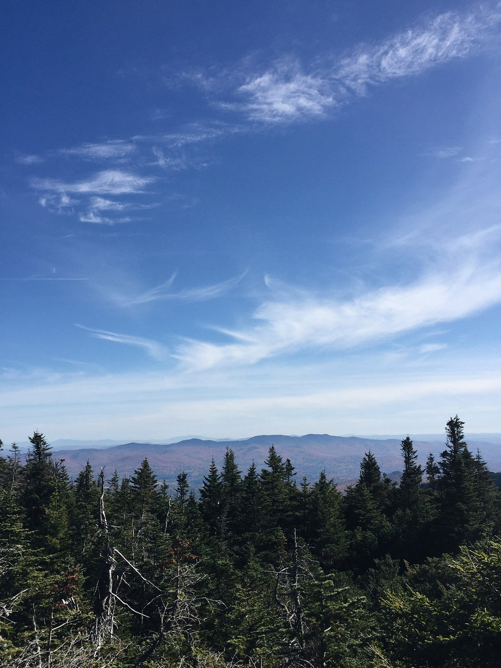 SINCE I ACTUALLY CAN'T SIT STILL, WE DECIDED TO HIKE MT. MANSFIELD THIS WEEKEND WITH SOME FAMILY THAT WAS IN TOWN.