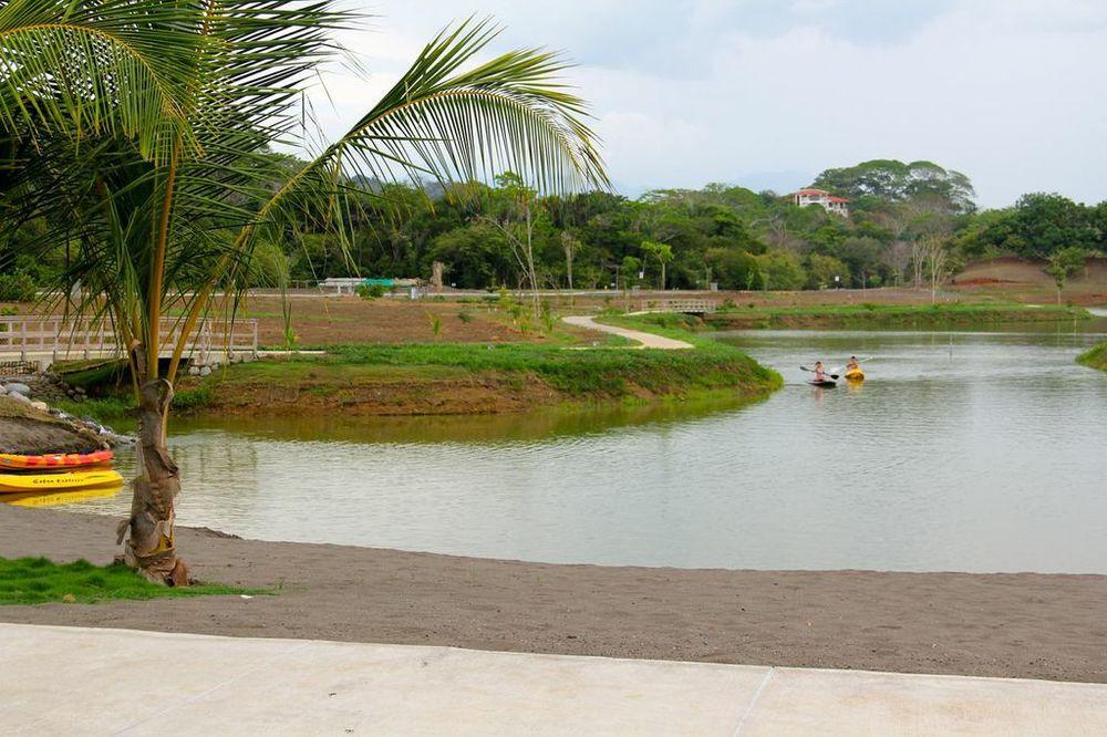 Kayaks lago.jpeg
