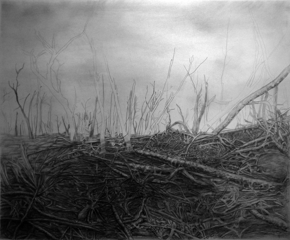 S_Cushner_Aftermath_1__37_x_45_inches_graphite_on______paper.jpg