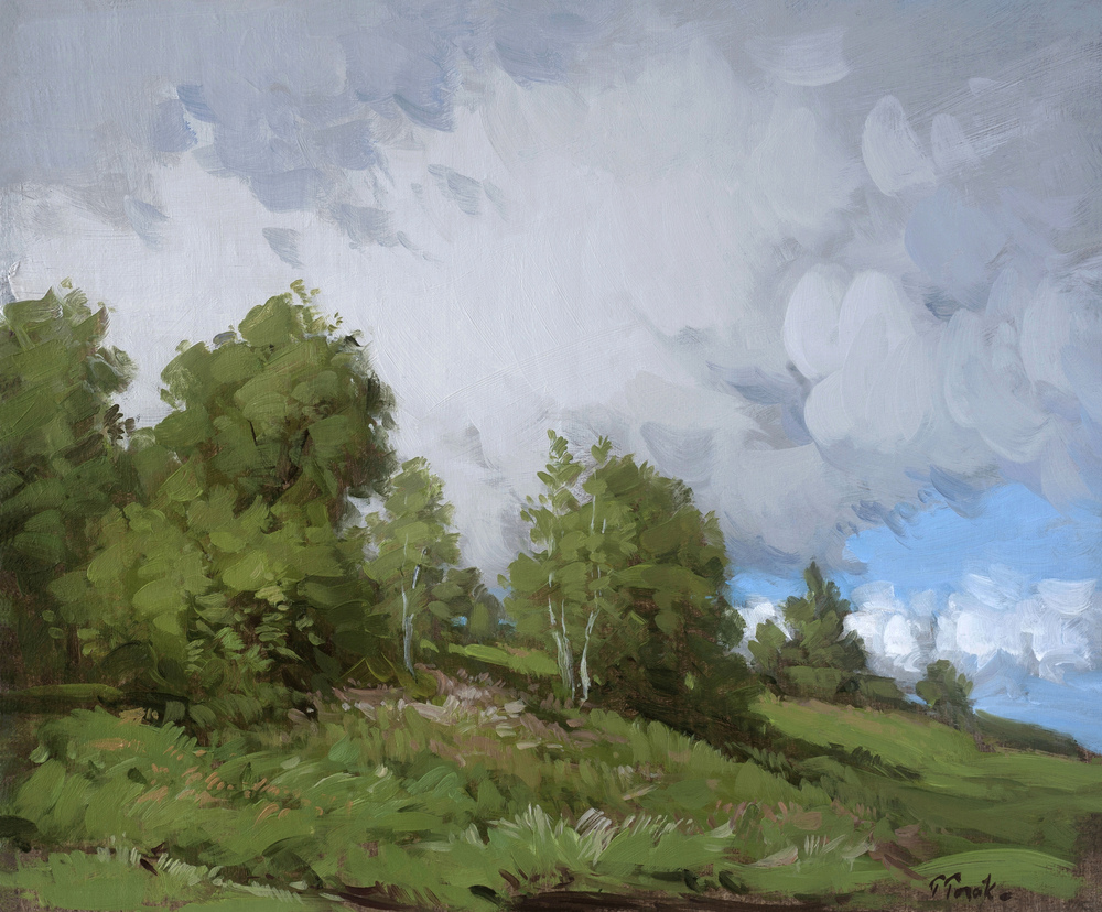 Torak_After the Rain_10x12_Oil on Panel_$2400.jpg