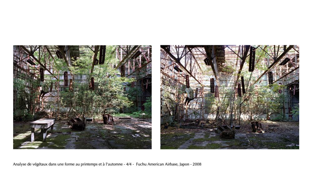 Jardins 9.jpg