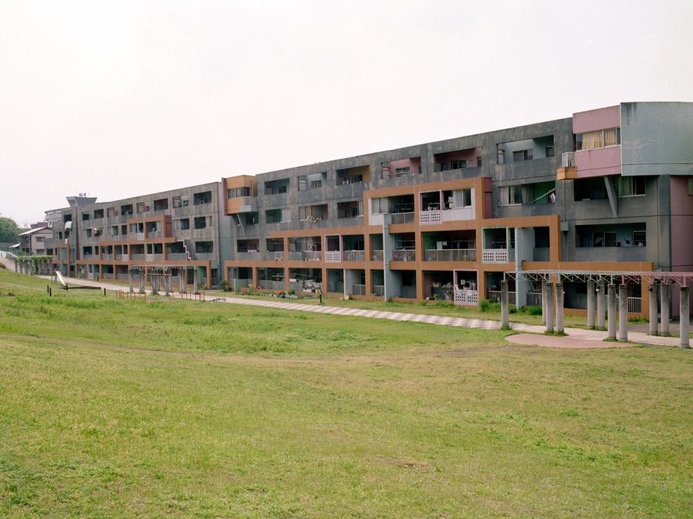 Schinchi-D-2.jpg