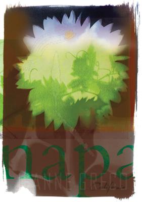 napa-sunflowerW.png