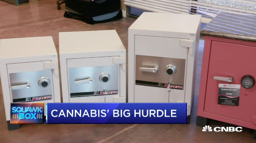 CNBC: Cannabis Business Banking