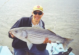 Our captain slaying another Hudson river Striper!