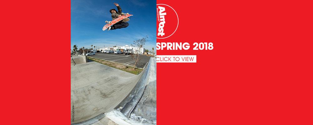 Almost_skateboard_spring_2018_ecatalog.jpg