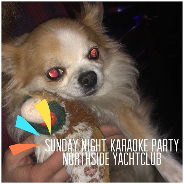 Snugs Satan sez come to Northside Yacht Club for karaoke you effin squares. 10pm.