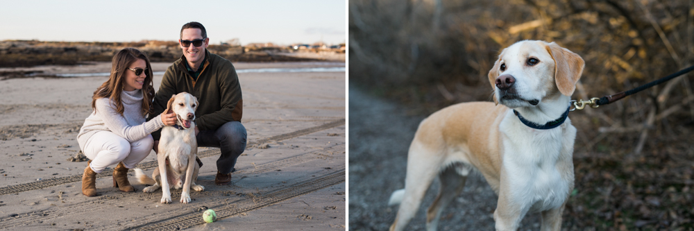 Engaged couple with their yellow lab on the beach at sunset