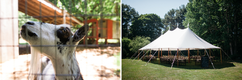 LFA_PattyChris_Josias_River_Farm_Cape_Neddick_York_Maine_Wedding-0001.jpg