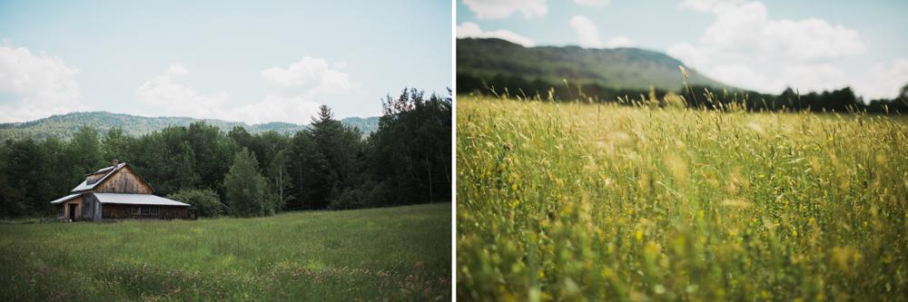 LFA_Robin_Ben_Vermont_Wedding_Bliss_Ridge_farm-0003.jpg