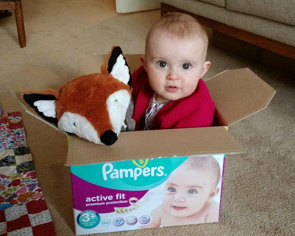 two little buttons pampers baby fox hampstead mums