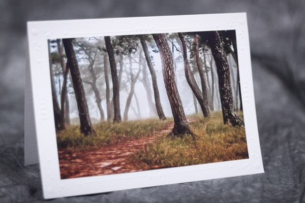 An example of a photo card by J.Benson Photography