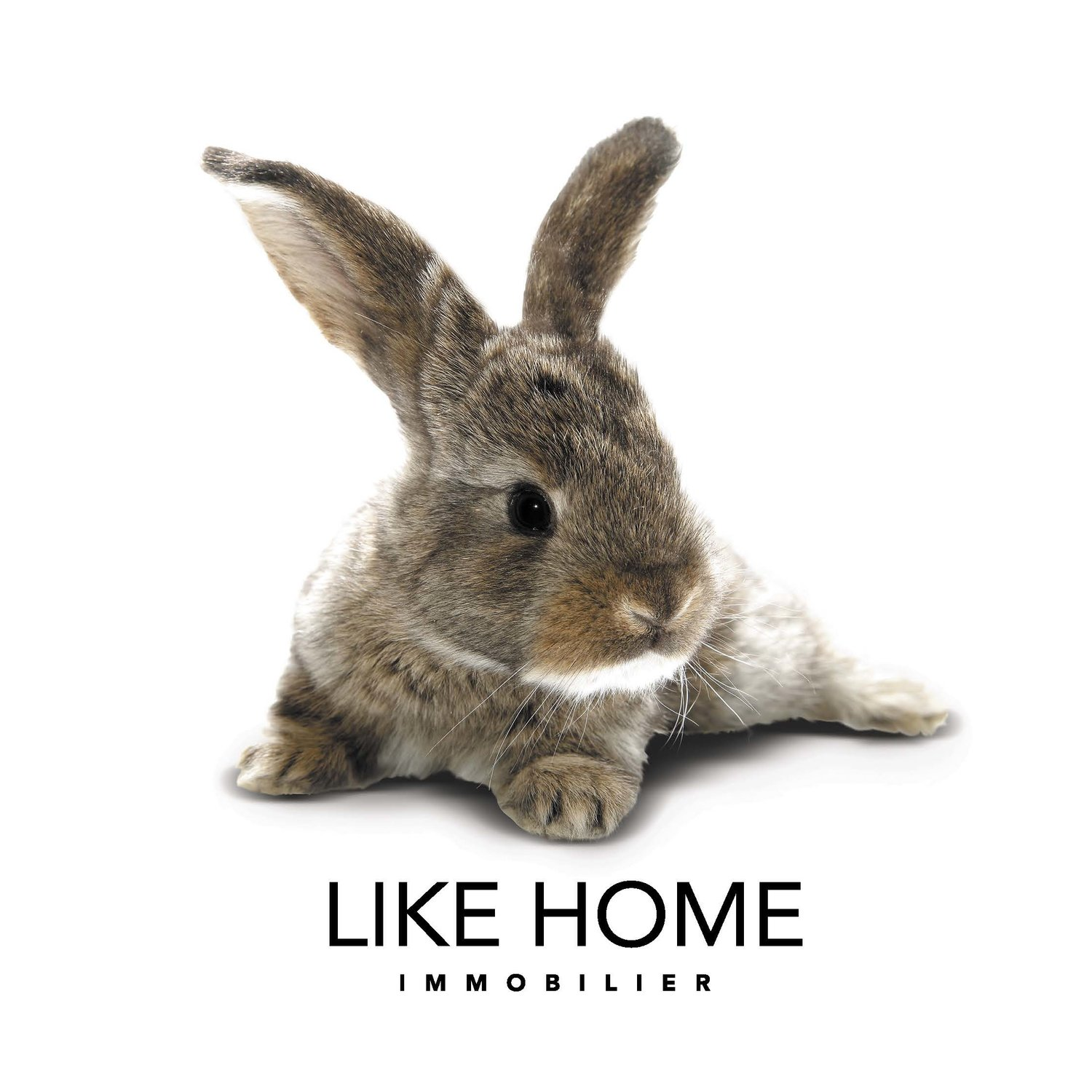LIKE HOME IMMOBILIER