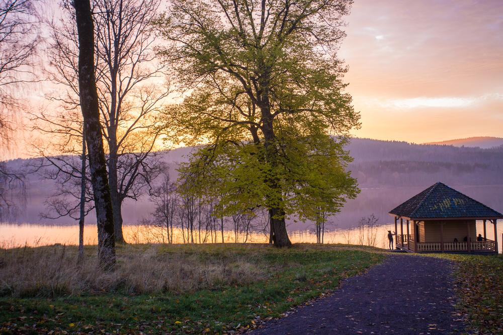 011115_fausko_oslo_bogstad_gustav_portrett_landskap-3.jpg