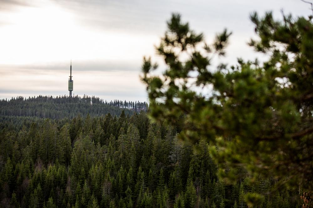 081115_fausko_oslo_skjennungstua_tryvannstårnet_landskap.jpg