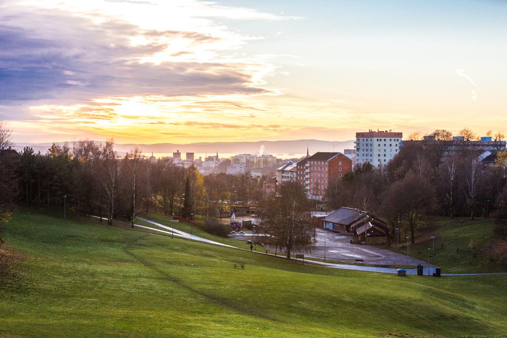 111115_fausko_oslo_thorsov_thorsovdalen_cityscape_landskap-2.jpg