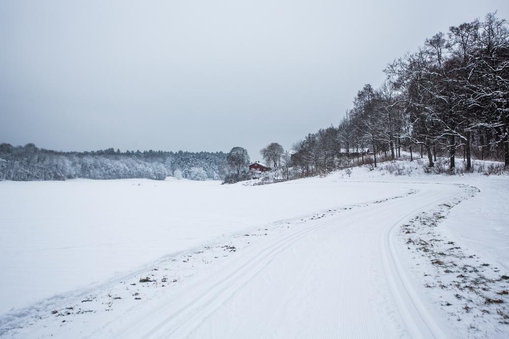 250116_fausko_oslo_bygdøy_vinter_landskap.jpg