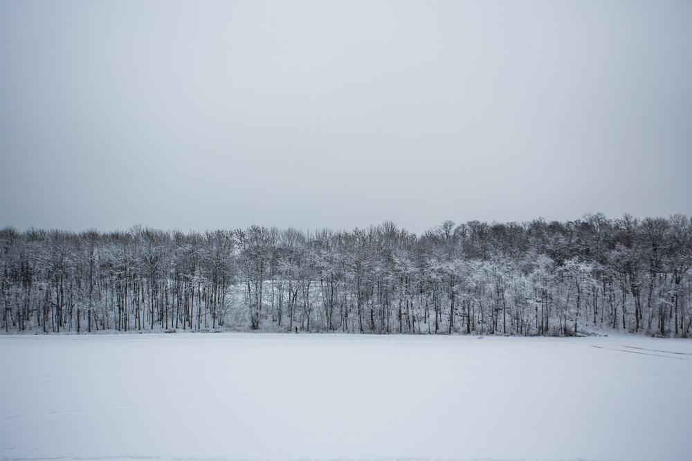 250116_fausko_oslo_bygdøy_vinter_landskap-2.jpg
