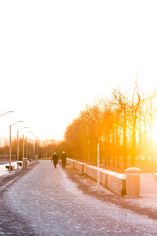 140216_fausko_oslo_fornebu_fornebuparken_solnedgang_landskap-2.jpg