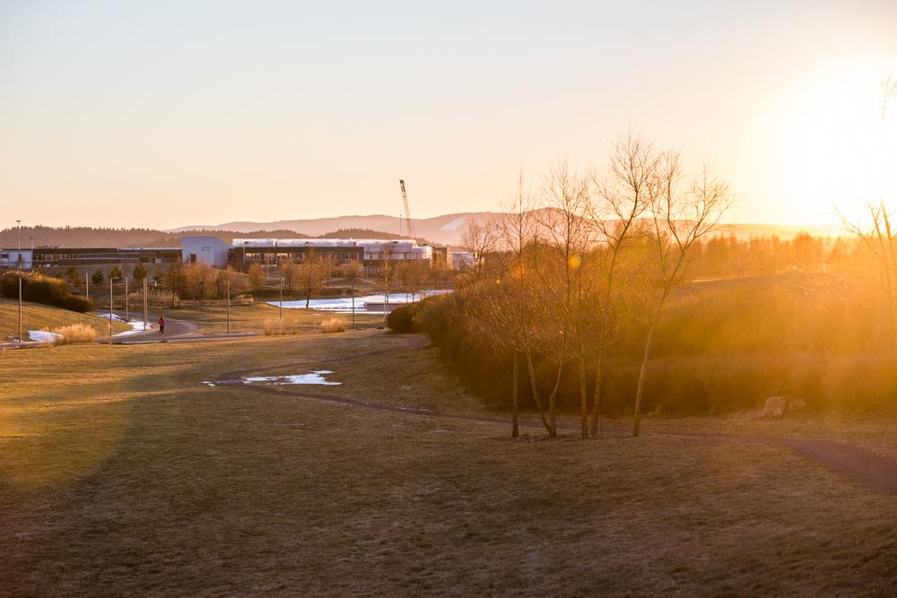 140216_fausko_oslo_fornebu_fornebuparken_solnedgang_landskap.jpg