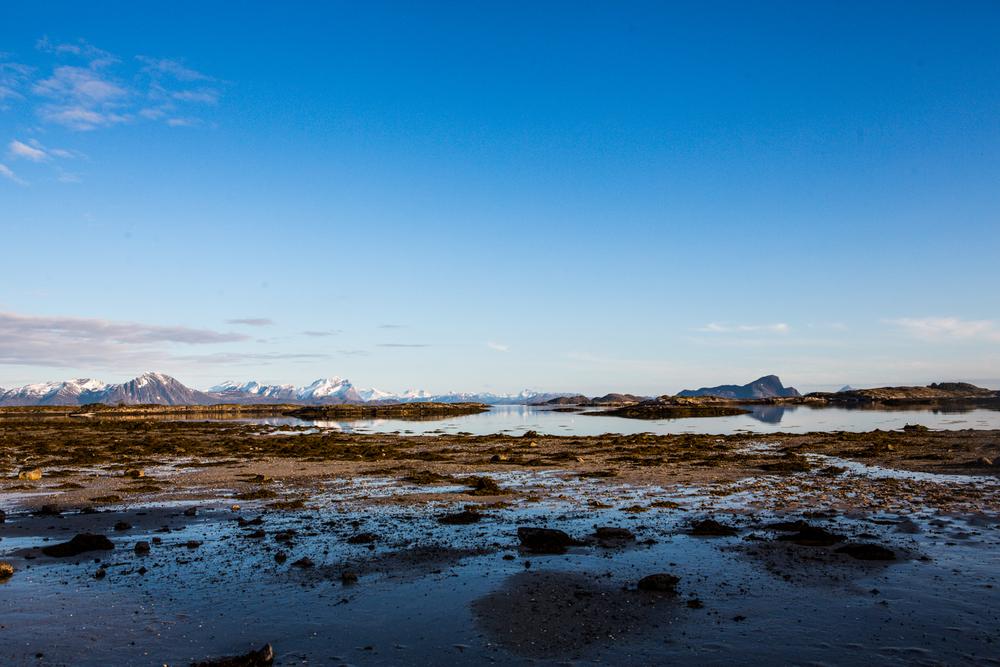 210516_fausko_lofotentravels_bolga_svartisen_landskap-8.jpg