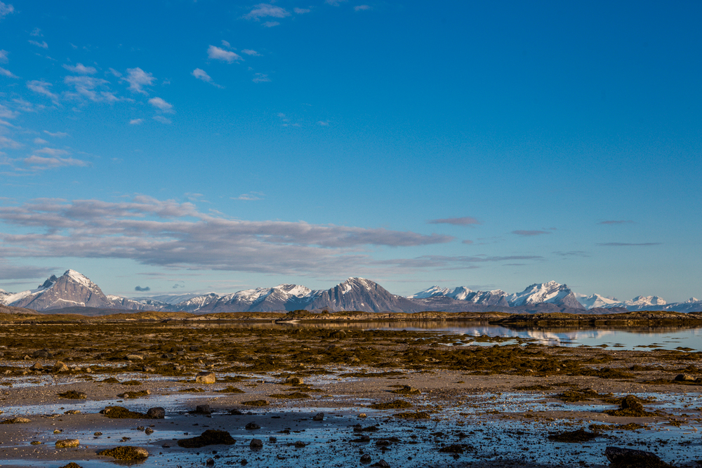 210516_fausko_lofotentravels_bolga_svartisen_landskap-9.jpg