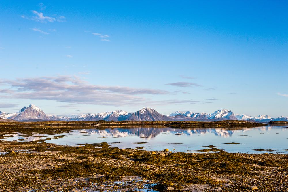 210516_fausko_lofotentravels_bolga_svartisen_landskap-11.jpg