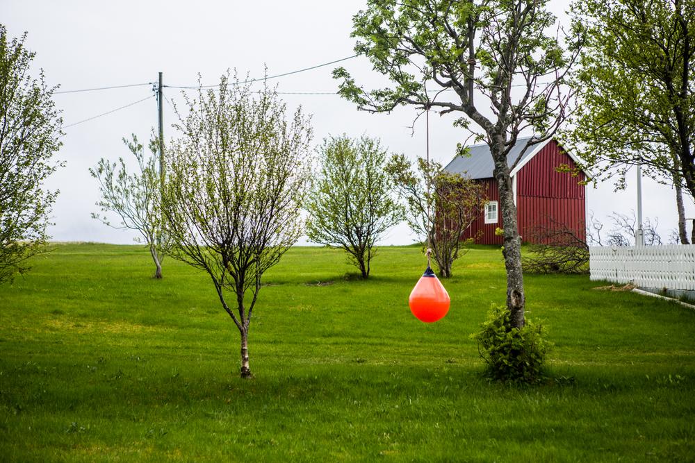 240516_fausko_lofotentravels_sørfugleøya_landskap_dokumentar-5.jpg
