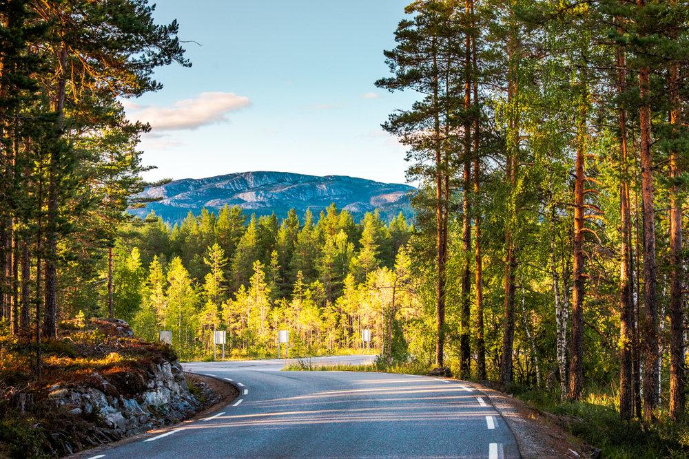 190818_fausko_norge_sommer_roadtohovden_gransherad_landskap.jpg