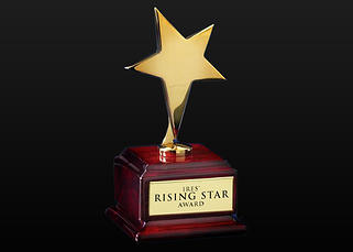 IRES® RISING STAR AWARD   Award is given yearly to an IRES® associate or team consisting of more than three individuals who demonstrates poise and determination and adheres company policies.