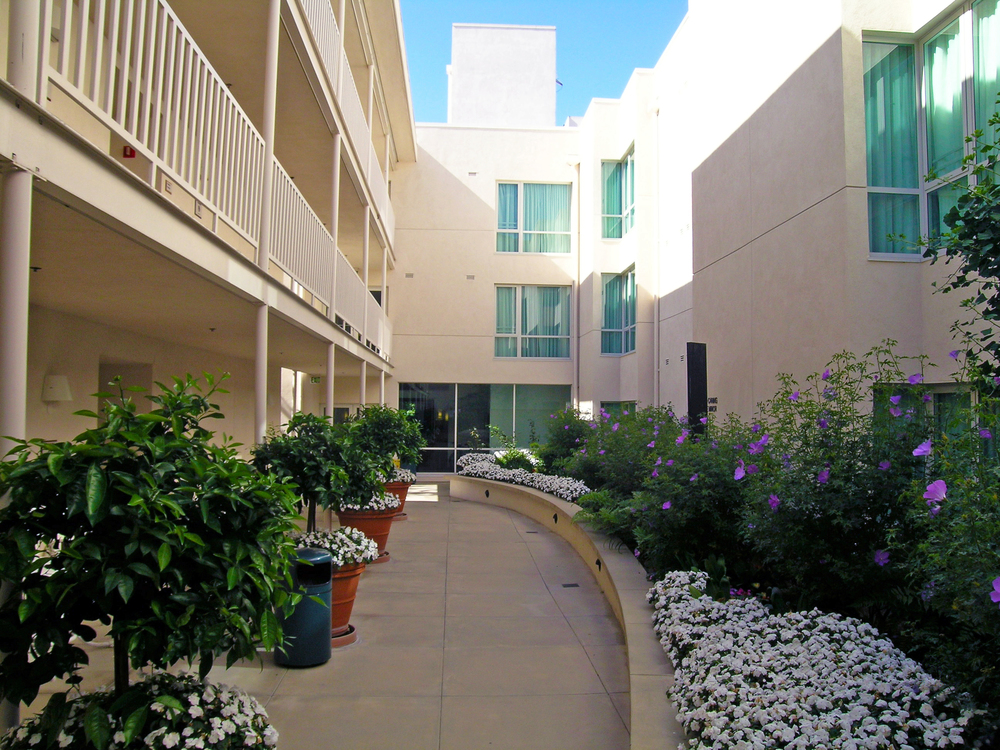 Courtyard1-edit.jpg