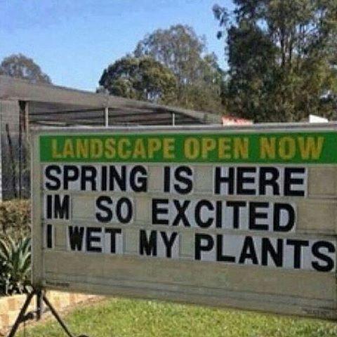 #spring #springtime #oopsie