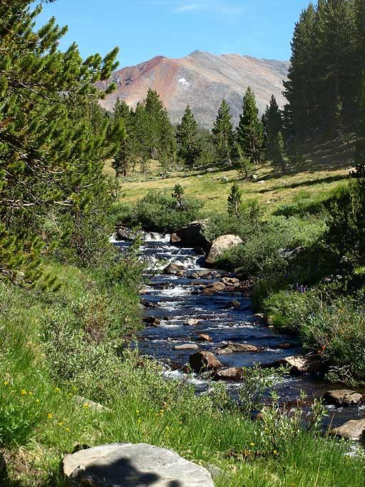 creek1-512.jpg