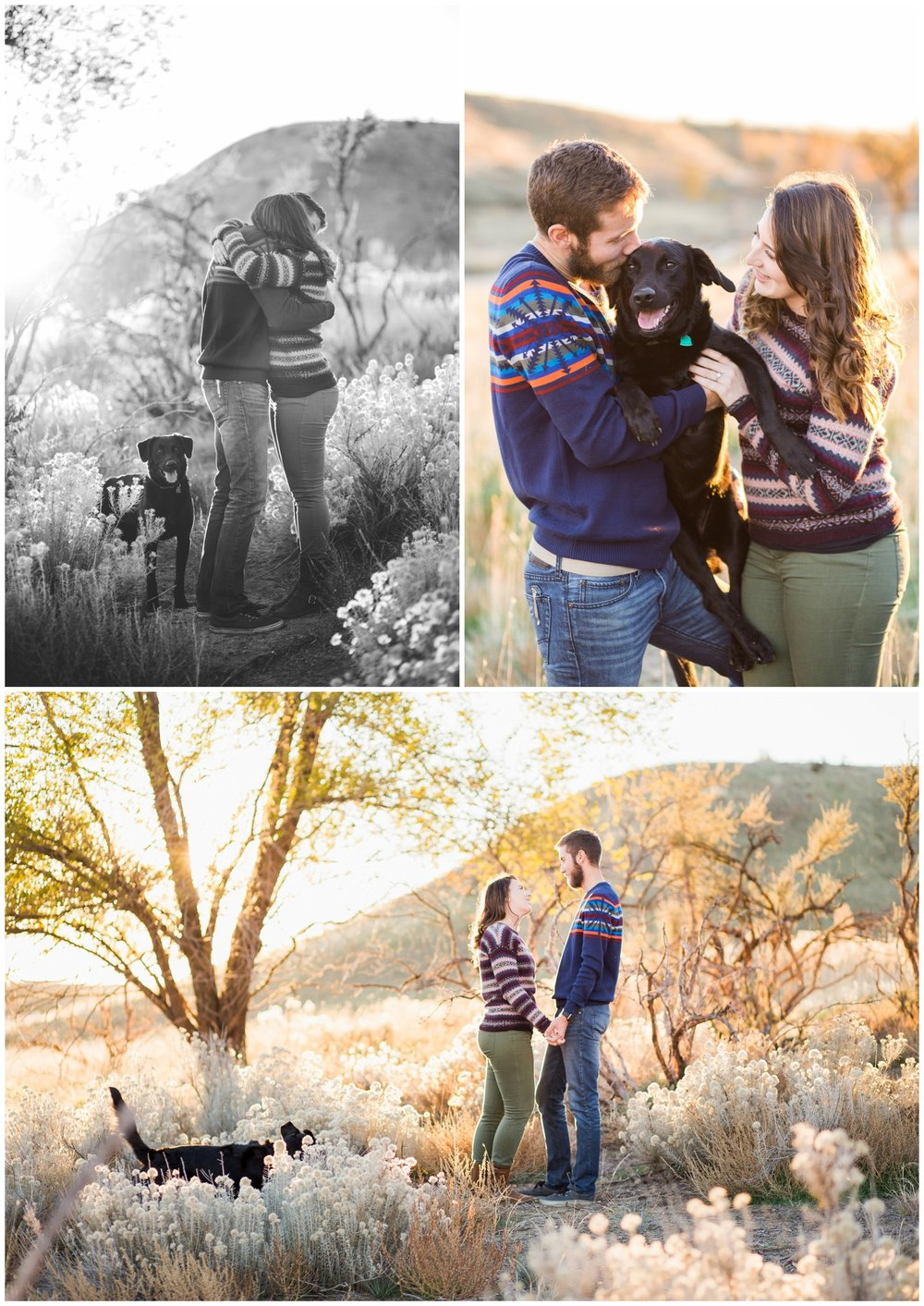 Golden hour sunset engagement photos with dog, Northwest portrait photographer