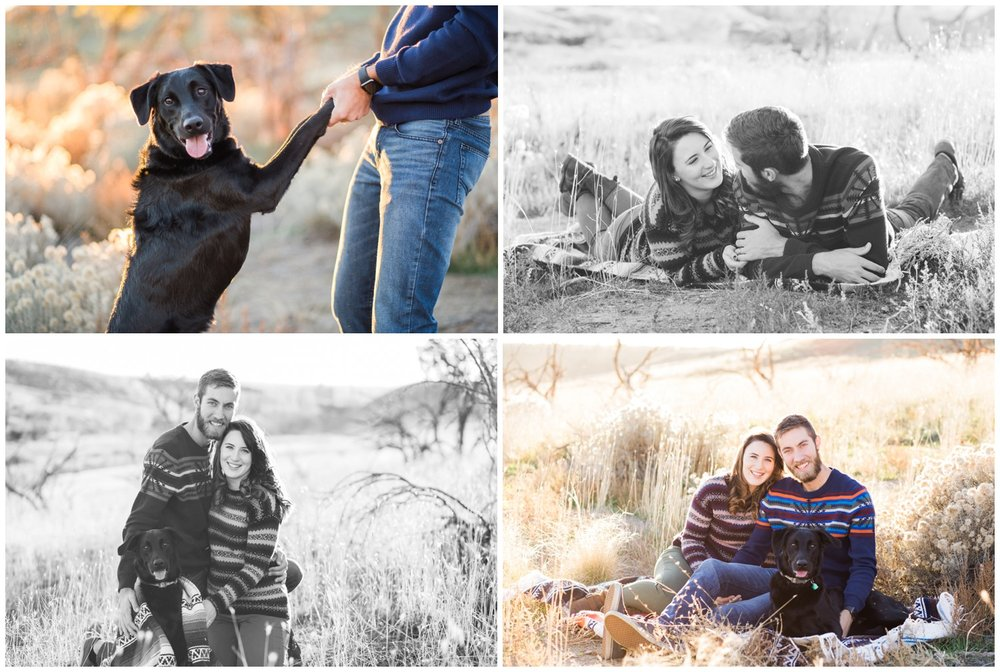 Man's best friend photo shoot, dog photography with Oregon photographer