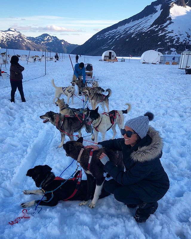 Being pulled by a sled of Alaskan huskies. Not my worst day. 🐺 #triedtostealone #almostworked #alaska