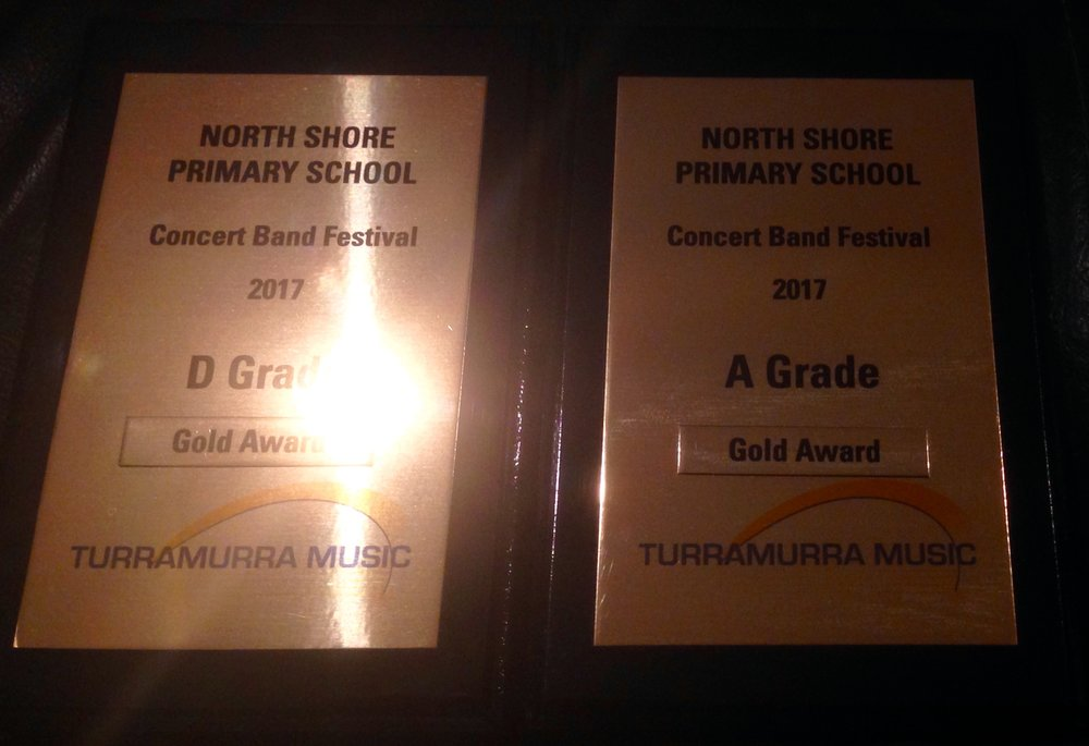 Gold Awards.jpg