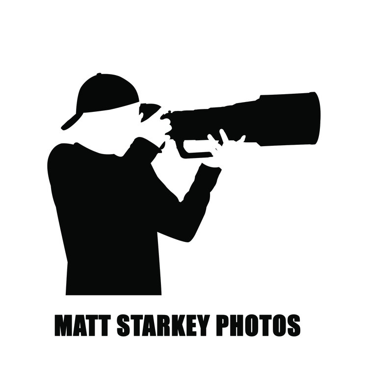 Matt Starkey Photos