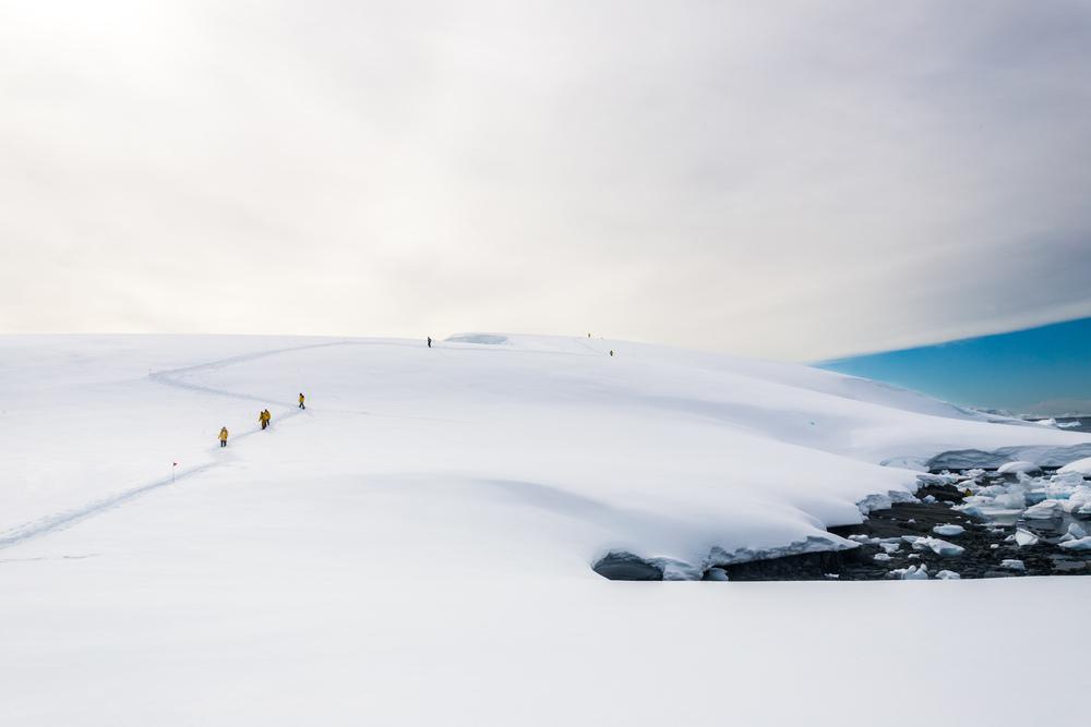 allisonqmccarthy-antarctica-14.jpg