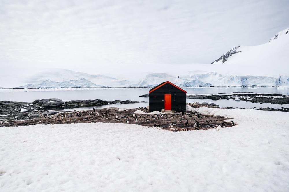 allisonqmccarthy-antarctica-48.jpg
