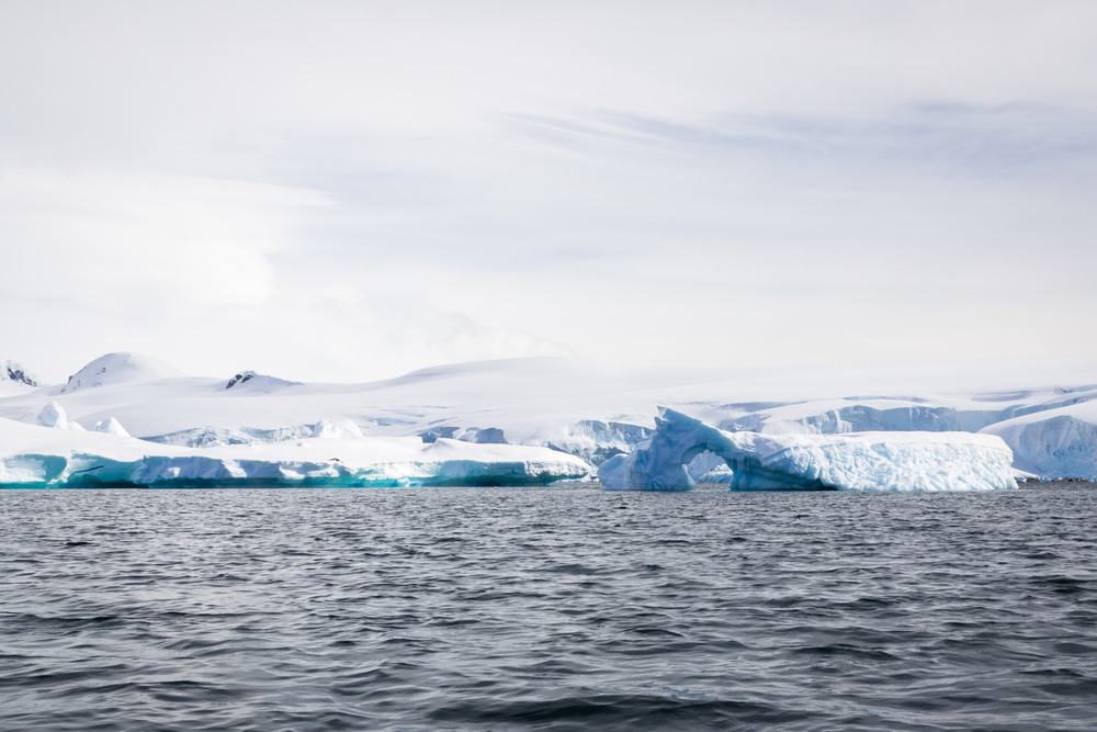 allisonqmccarthy-antarctica-59.jpg